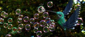Leadership zerplatzt oft wie Seifenblasen